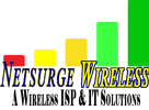 NETSURGE WIRELESS